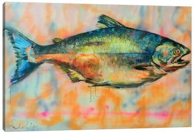 Wild Salmon Canvas Art Print