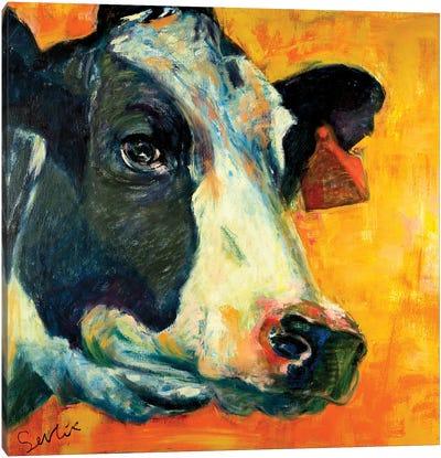 Cow Portrait VI Canvas Art Print