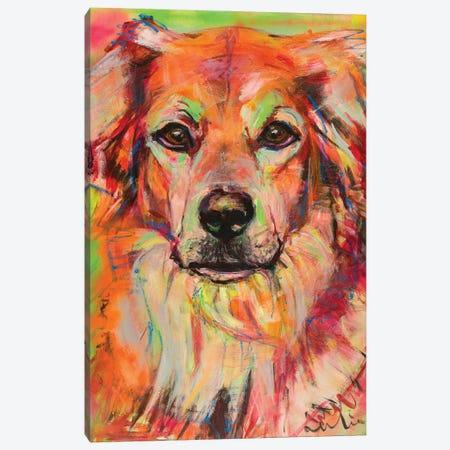 Bernese Mountain X Labrador Portrait Canvas Print #LSR2} by Liesbeth Serlie Art Print
