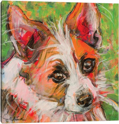 Chihuahua X Jack Russell Portrait Canvas Art Print