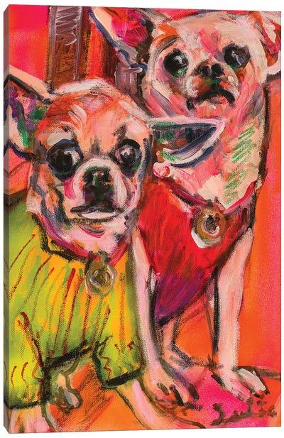 Chihuahuas Canvas Art Print
