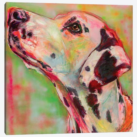 Dalmatian Portrait Canvas Print #LSR6} by Liesbeth Serlie Canvas Wall Art