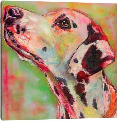 Dalmatian Portrait Canvas Art Print