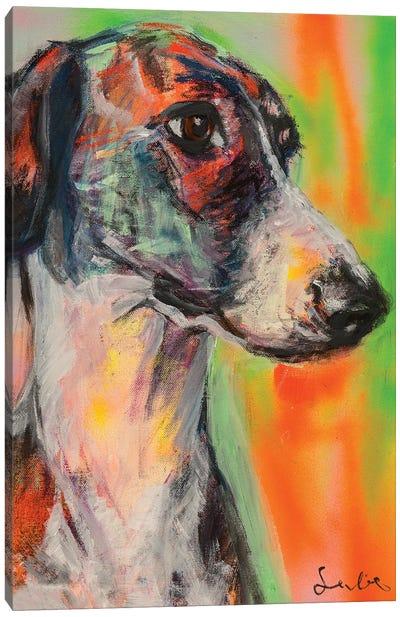 Galgo Portrait Canvas Art Print