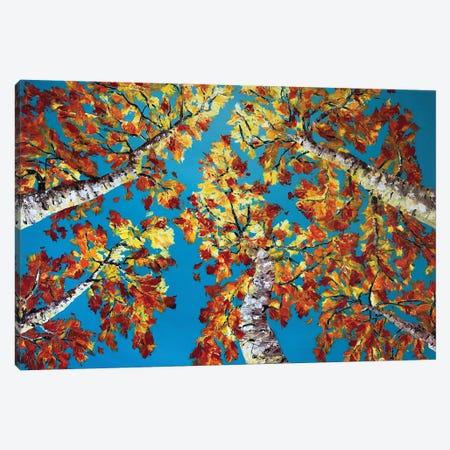Fall Symphony II Canvas Print #LSV14} by Lena Smirnova Canvas Art Print