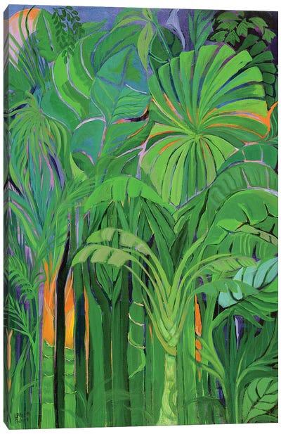 Rain Forest I, Malaysia, 1990 Canvas Art Print
