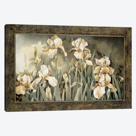 Field Of Irises Canvas Print #LTH12} by Linda Thompson Art Print