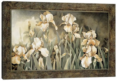 Field Of Irises Canvas Art Print