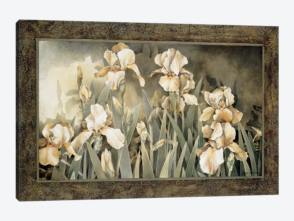 Field Of Irises by Linda Thompson 1-piece Canvas Artwork