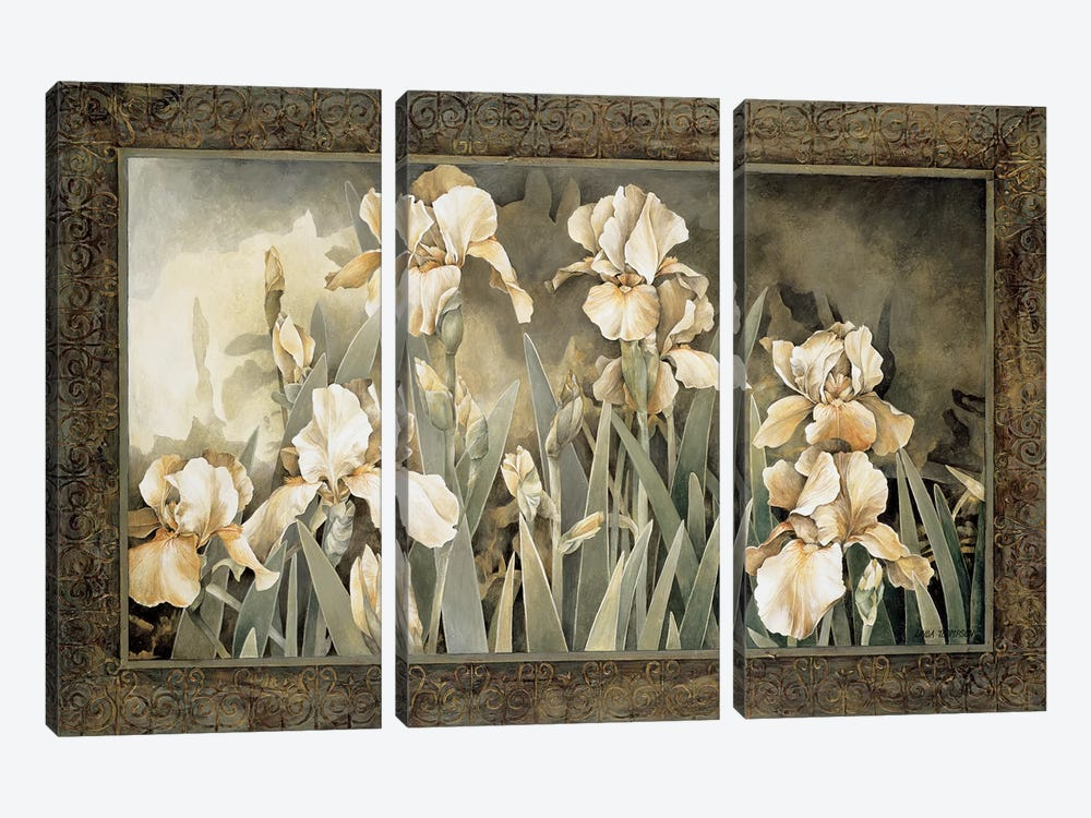 Field Of Irises by Linda Thompson 3-piece Canvas Wall Art