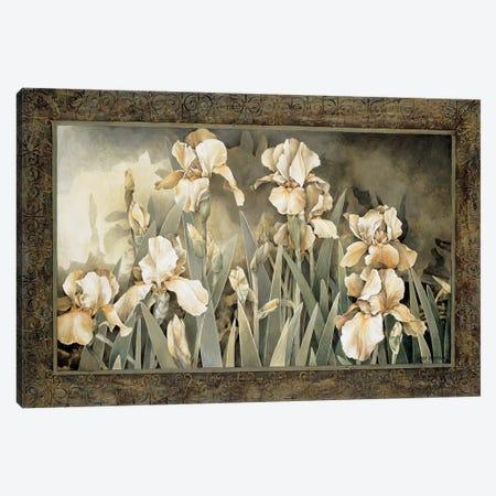 Field Of Irises Canvas Print #LTH12} by Linda Thompson Art Print