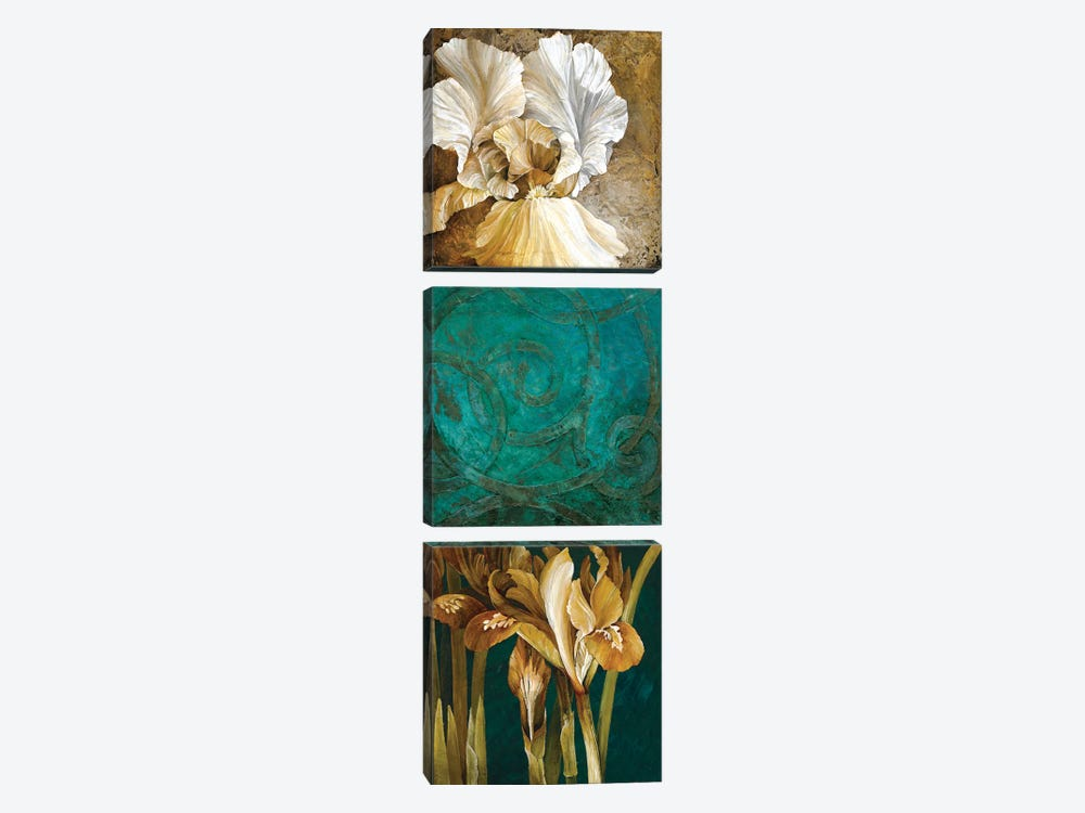 From My Garden II by Linda Thompson 3-piece Canvas Wall Art