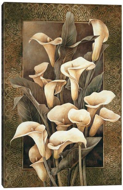 Golden Calla Lilies Canvas Art Print
