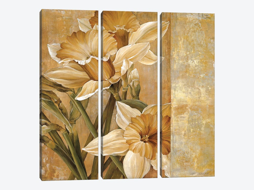 Champagne Daffodils I by Linda Thompson 3-piece Canvas Print