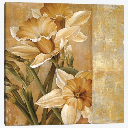Champagne Daffodils I 3-Piece Canvas #LTH1} by Linda Thompson Canvas Print