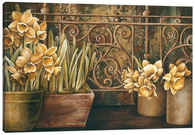Ironwork With Daffodils Canvas Art Print