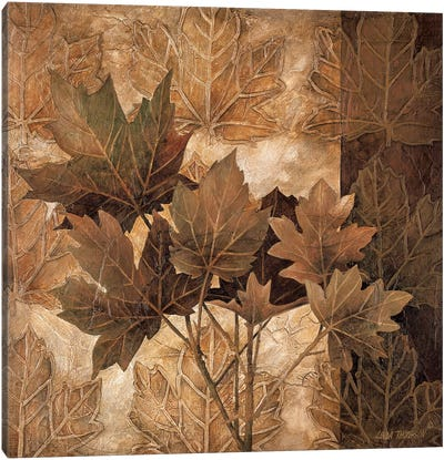 Leaf Patterns II Canvas Art Print