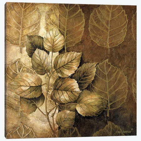 Leaf Patterns III Canvas Print #LTH23} by Linda Thompson Canvas Wall Art