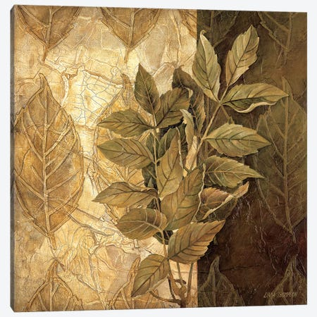 Leaf Patterns IV Canvas Print #LTH24} by Linda Thompson Art Print