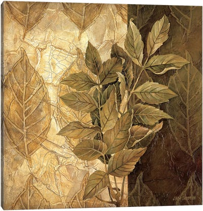 Leaf Patterns IV Canvas Art Print