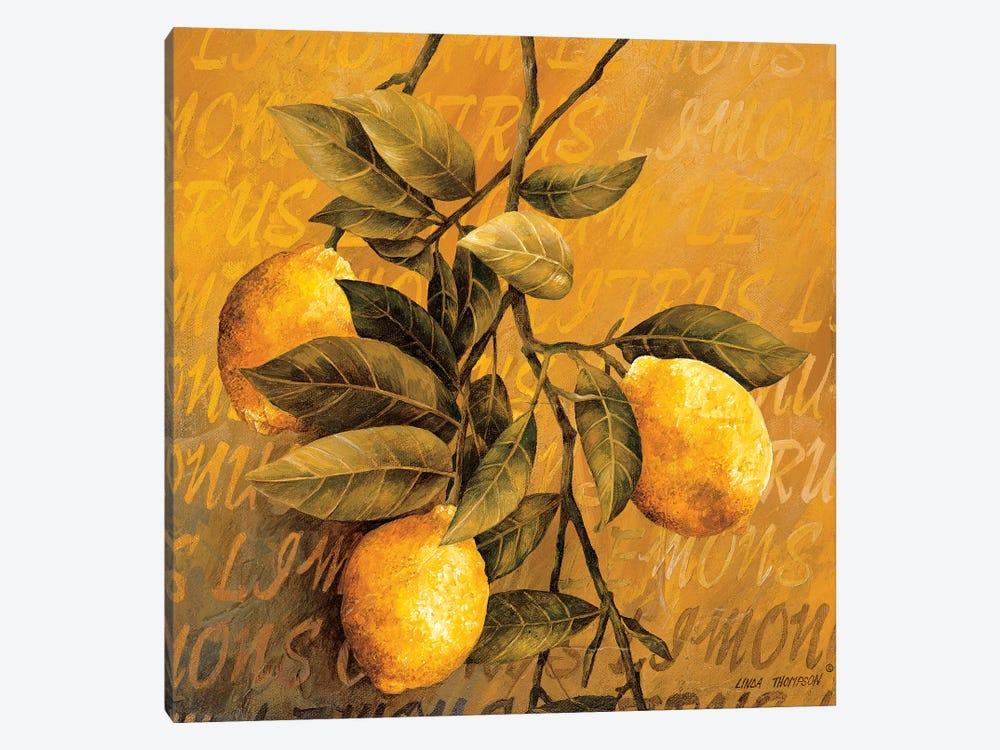 Lemon Branch by Linda Thompson 1-piece Canvas Artwork