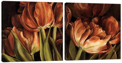 Color Harmony Diptych Canvas Art Print