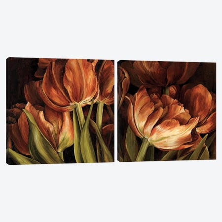 Color Harmony Diptych Canvas Print Set #LTH2HSET001} by Linda Thompson Canvas Art