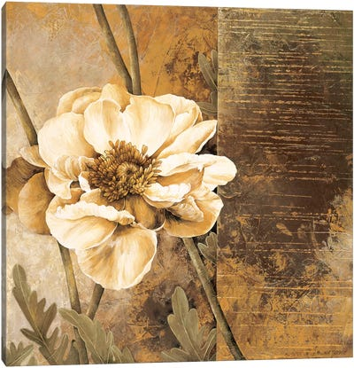 Rustic Garden I Canvas Art Print