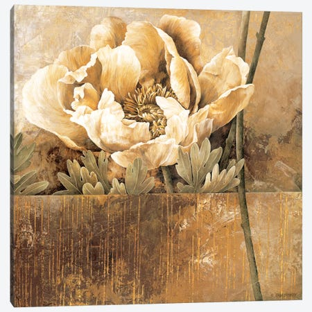 Rustic Garden II Canvas Print #LTH33} by Linda Thompson Canvas Art Print