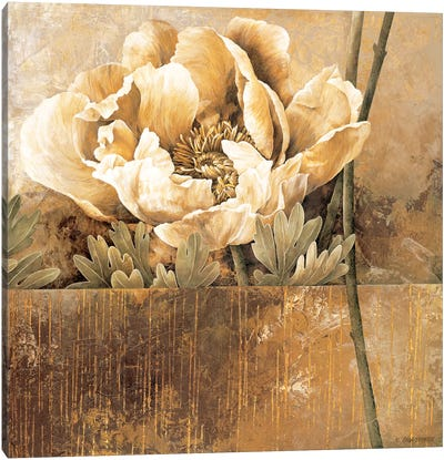 Rustic Garden II Canvas Art Print