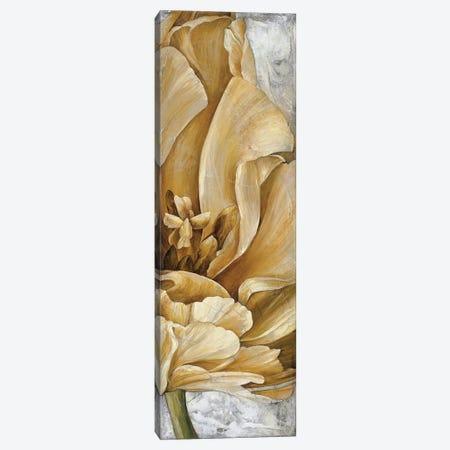 Single Appeal I Canvas Print #LTH35} by Linda Thompson Canvas Art