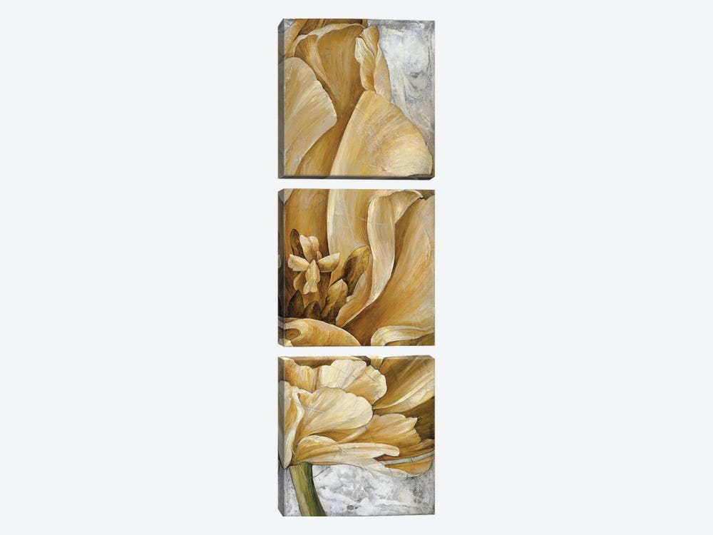 Single Appeal I by Linda Thompson 3-piece Art Print