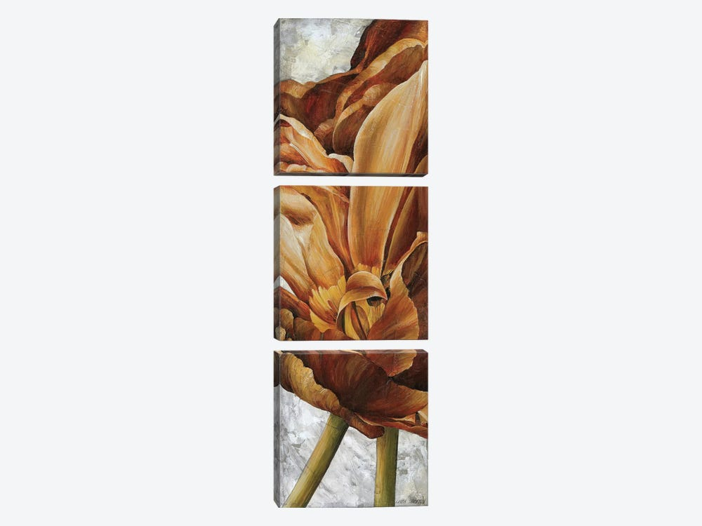 Single Appeal II by Linda Thompson 3-piece Canvas Artwork