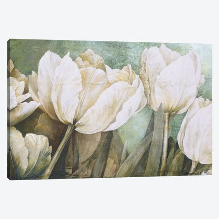 Taste Of Summer Canvas Print #LTH42} by Linda Thompson Canvas Artwork