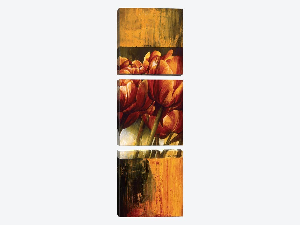 Floral Radiance I by Linda Thompson 3-piece Canvas Art