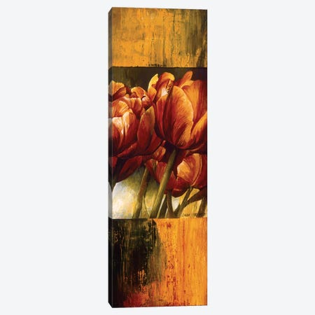 Floral Radiance I Canvas Print #LTH45} by Linda Thompson Art Print