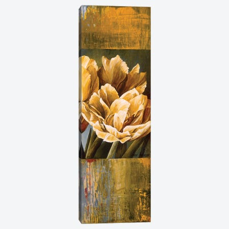 Floral Radiance II Canvas Print #LTH46} by Linda Thompson Canvas Art Print