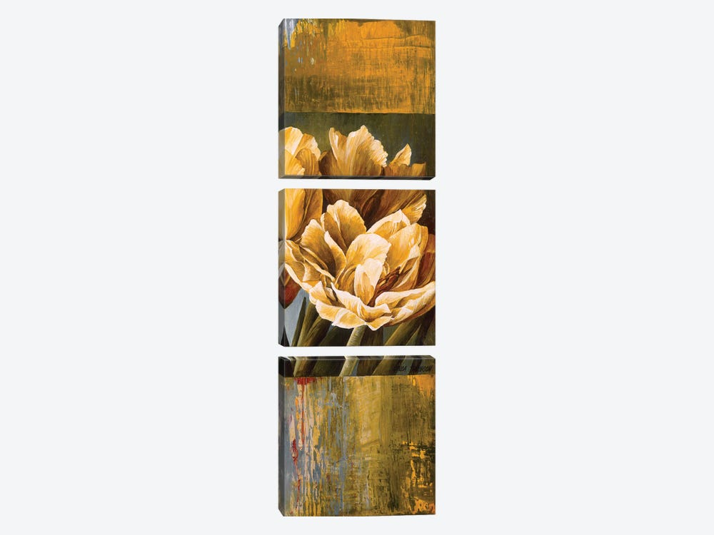 Floral Radiance II by Linda Thompson 3-piece Canvas Print