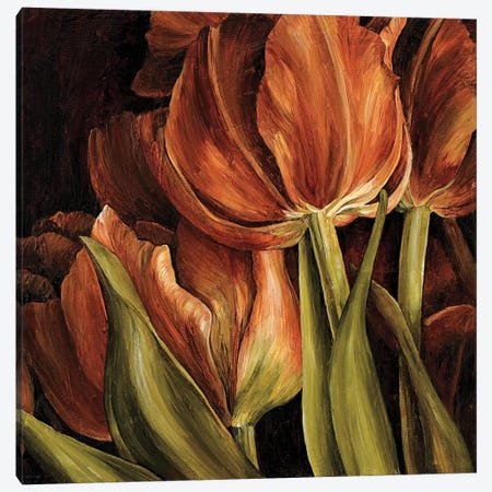 Color Harmony I 3-Piece Canvas #LTH4} by Linda Thompson Canvas Art