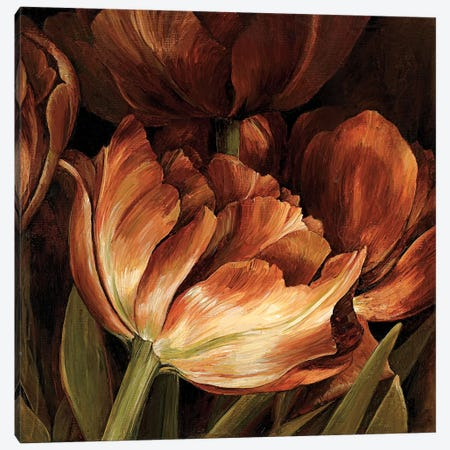 Color Harmony II Canvas Print #LTH5} by Linda Thompson Canvas Wall Art