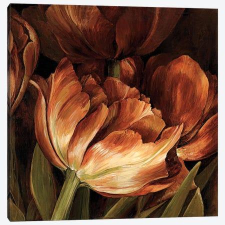 Color Harmony II Canvas Print #LTH5} by Linda Thompson Canvas Wall Art