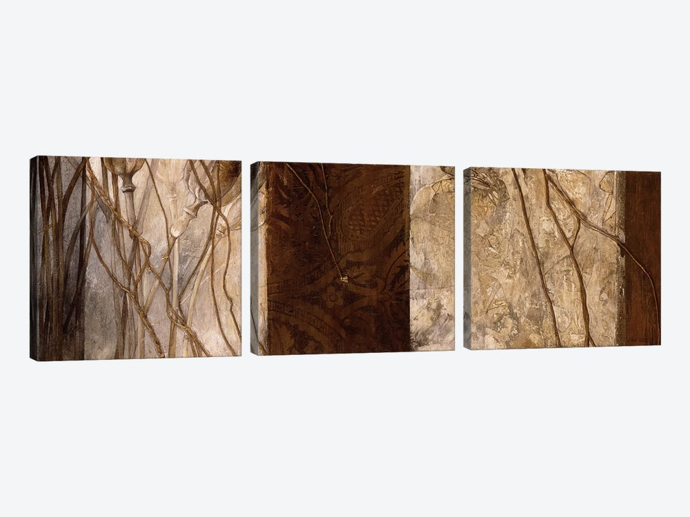 Copper's Edge I by Linda Thompson 3-piece Canvas Wall Art