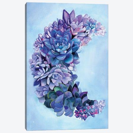 Succulent Moon Garden Canvas Print #LTR30} by Christine Lindstrom Canvas Art Print
