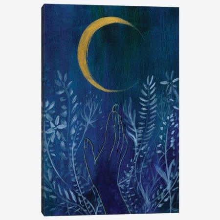 Flower Moon Canvas Print #LTR8} by Christine Lindstrom Canvas Artwork