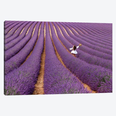 Violet Canvas Print #LTT15} by Massimo Della Latta Canvas Wall Art