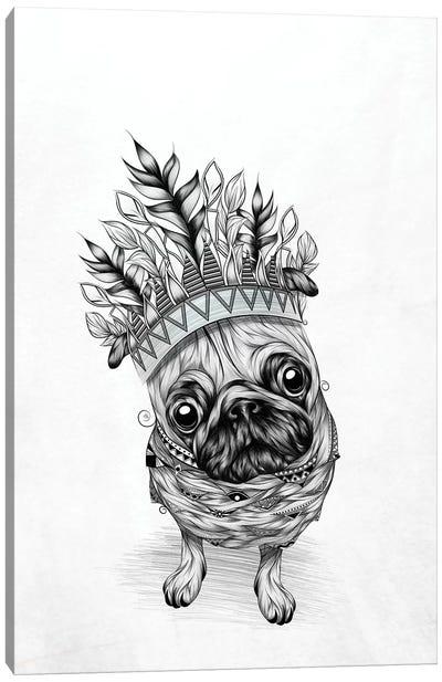 Indian Pug Canvas Art Print