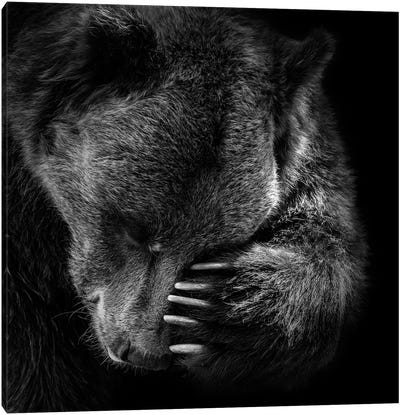 Bear In Black & White I Canvas Art Print