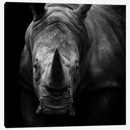 Rhino In Black & White 3-Piece Canvas #LUK21} by Lukas Holas Canvas Wall Art