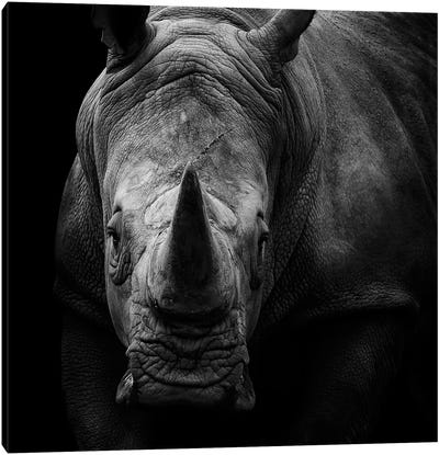 Rhino In Black & White Canvas Art Print