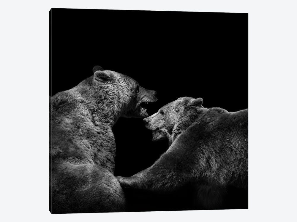 Two Bears In Black & White by Lukas Holas 1-piece Canvas Wall Art